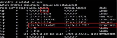 Ping the IP of vmservice-vmknic-pg
