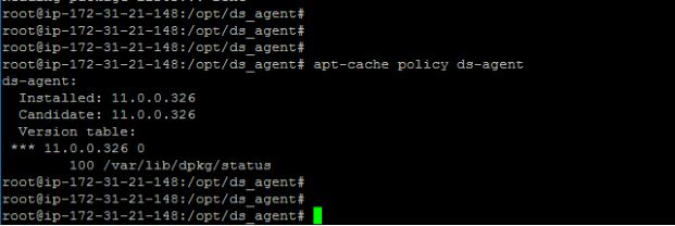 Checking version for Debian