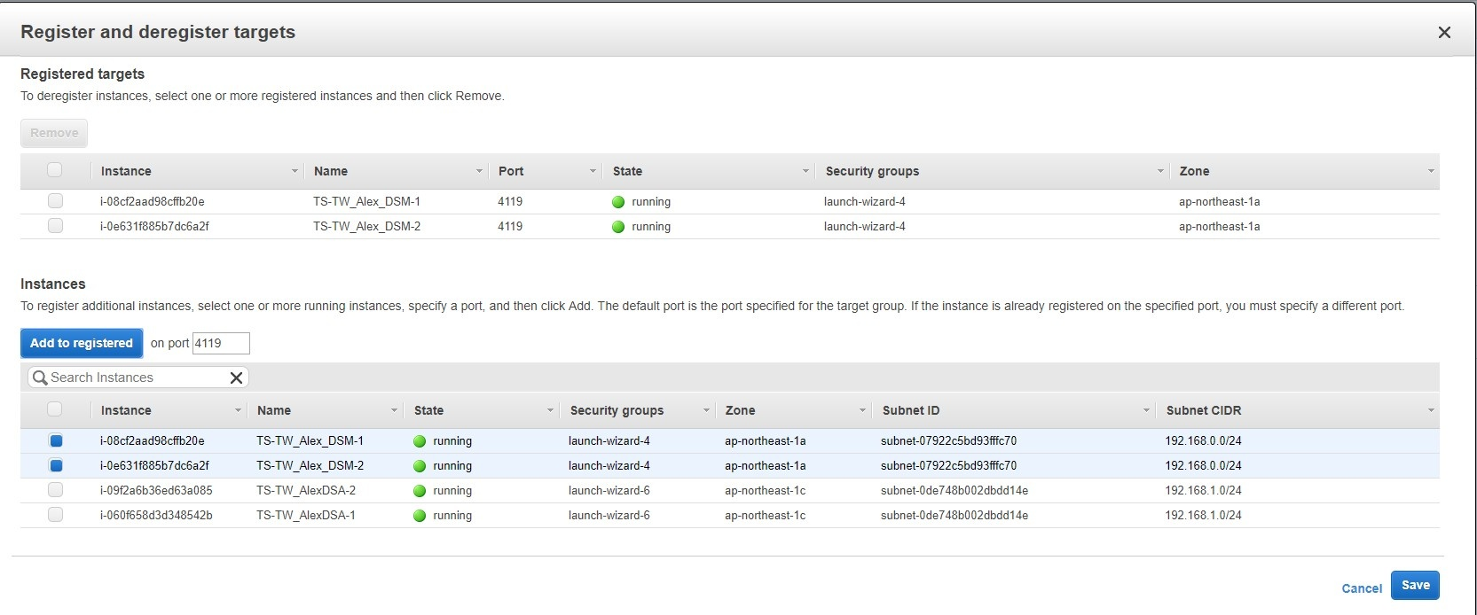 Add instances of DSM to the target group