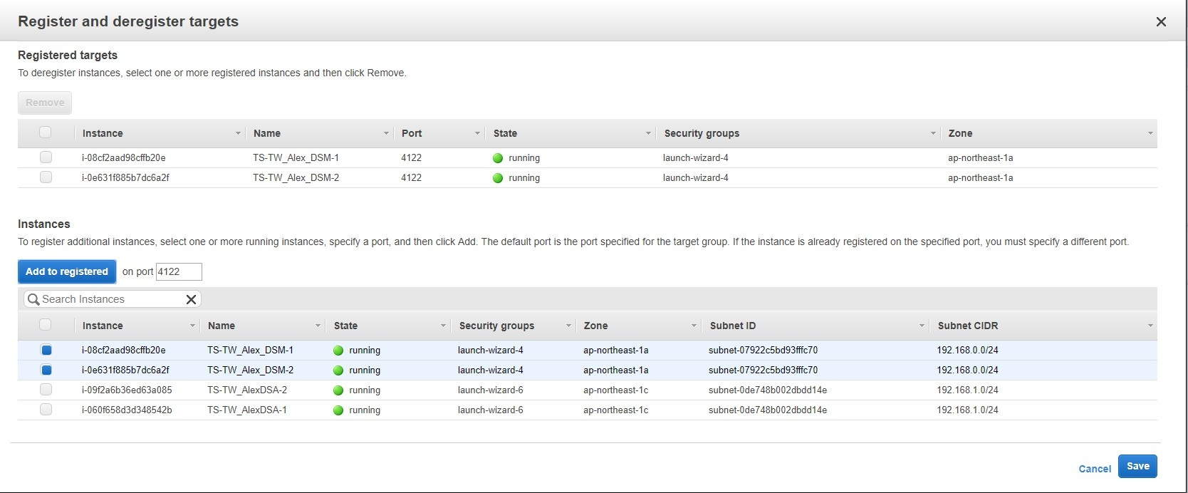 Add instances of DSR to the target group