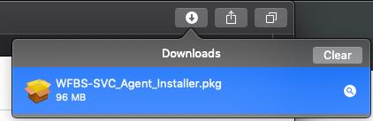 Open the downloaded installer
