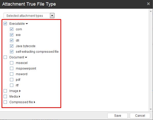 Attachment true file type