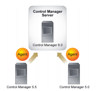 Migration of agents belonging to multiple servers