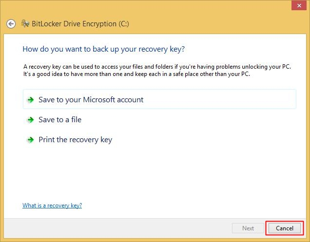 Click Cancel to cancel encrypting the drive
