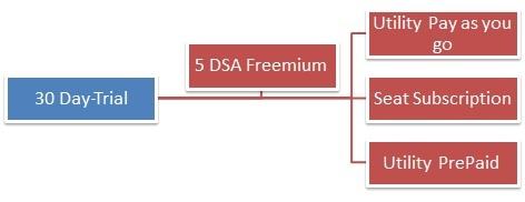 DSaaS licensing options