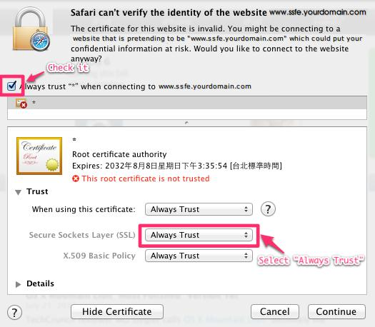 "Mark ""Always trust ""*"" when connecting to www.ssfe.yourdomain.com"" check box"