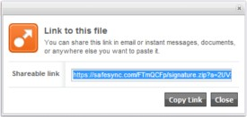 SafeSync shareable link