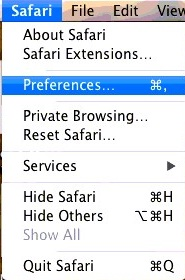 Go to Safari > Preferences