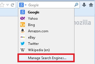 Manage Search Provider