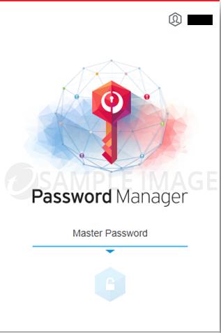 Type in your Master Password